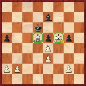 D:\t602\Treninky\Skola\Nove_stranky\Analyzujme\21_lekce\Firouzja Alireza - Carlsen Magnus (48.Kf5+-).jpg