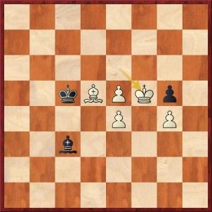 D:\t602\Treninky\Skola\Nove_stranky\Analyzujme\21_lekce\Firouzja Alireza - Carlsen Magnus (60.Kf5).jpg