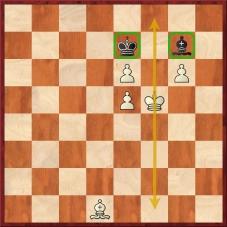 D:\t602\Treninky\Skola\Nove_stranky\Analyzujme\21_lekce\Firouzja Alireza - Carlsen Magnus (71...Sg7).jpg