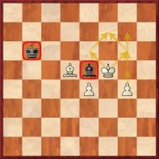 D:\t602\Treninky\Skola\Nove_stranky\Analyzujme\21_lekce\Firouzja Alireza - Carlsen Magnus (62.Kf5).jpg