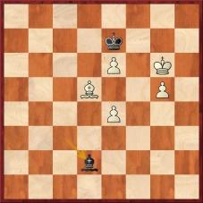 D:\t602\Treninky\Skola\Nove_stranky\Analyzujme\21_lekce\Firouzja Alireza - Carlsen Magnus (64...Sd2™=).jpg